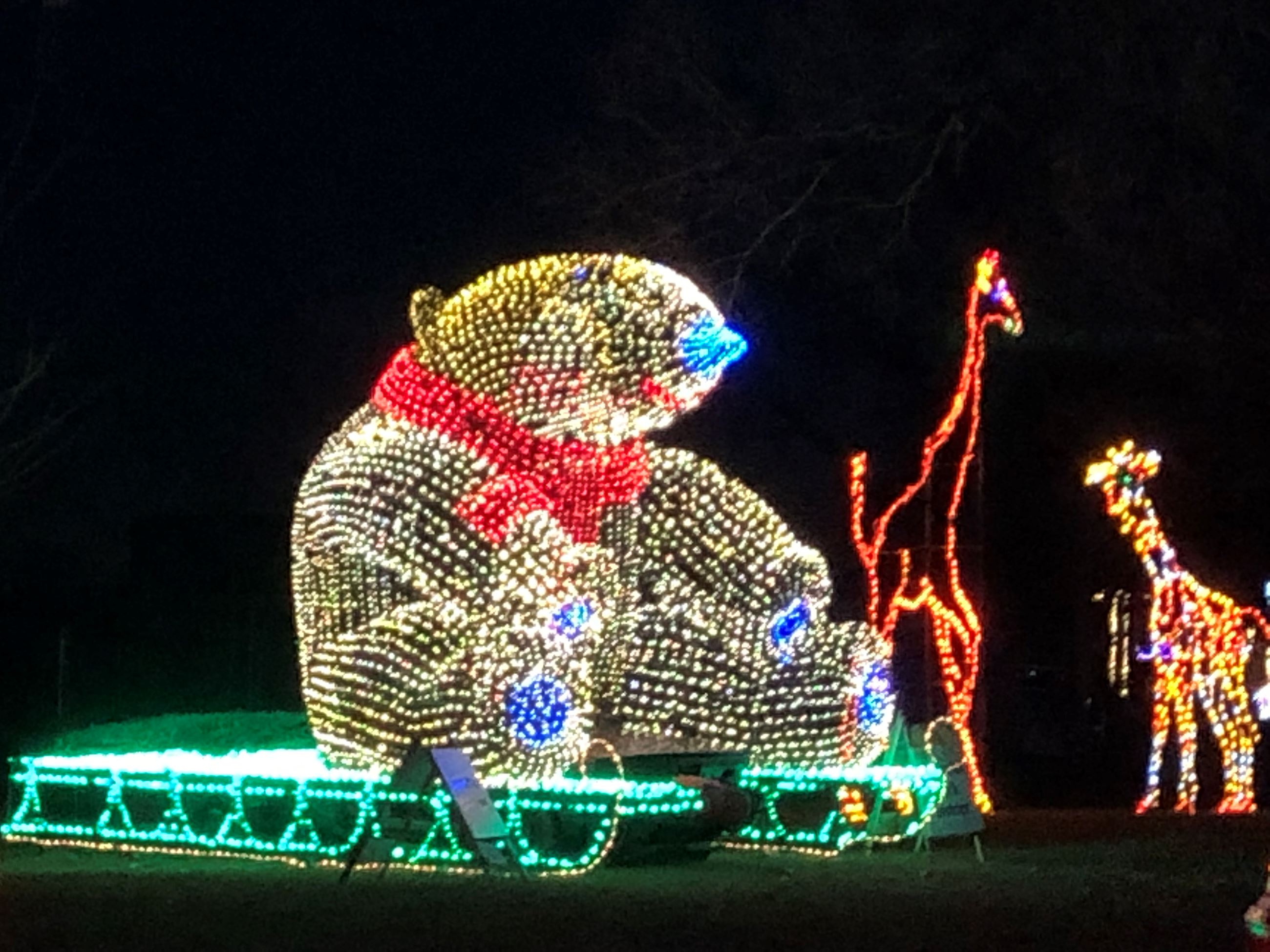 Christmas Displays In Illinois 2020 Festival of Lights | East Peoria, IL